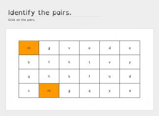 Identify-the-pairs
